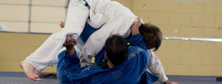 Sporty walki - największe osiągnięcia Polaków w sportach walki