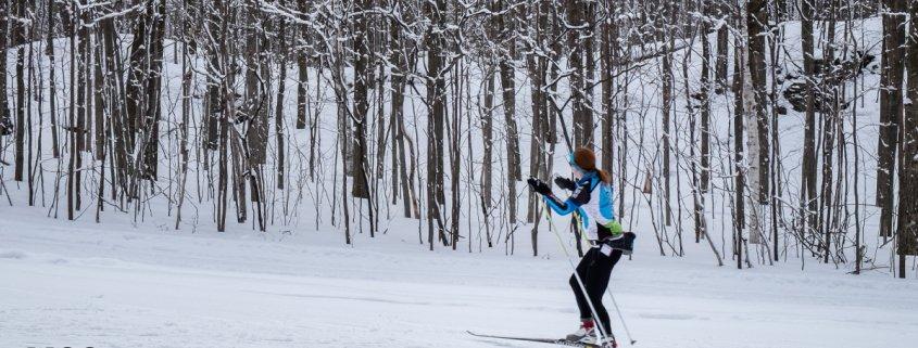 Biegi narciarskie - ciekawostki na temat dyscypliny sportowej